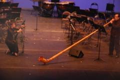 photos-du-festival-du-cor-20-11-2011-089